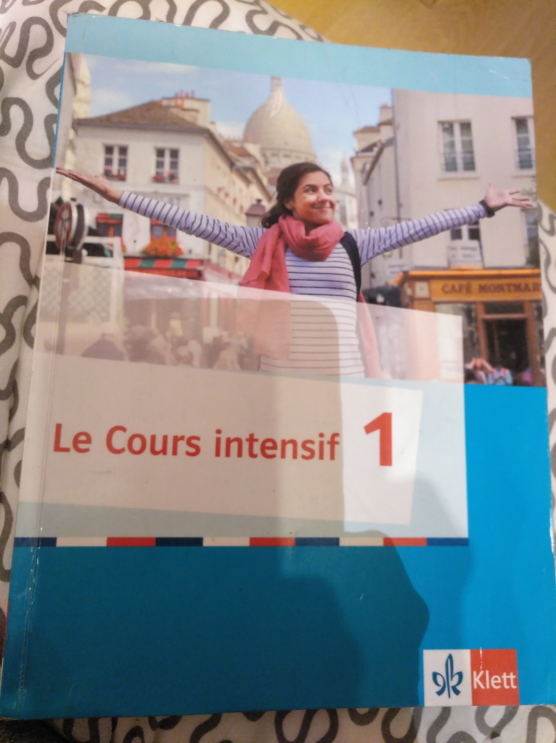 Le Cours Intensif 1 Buch